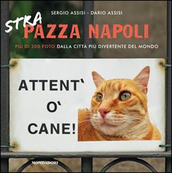 Libro Strapazza Napoli Sergio Assisi, Dario Assisi