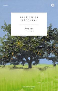 Libro Poesie Pierluigi Bacchini