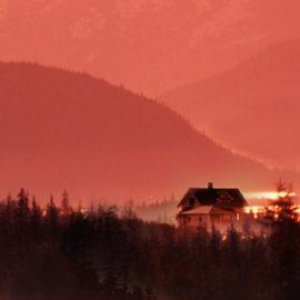 """""""Il grande inverno"""", il nuovo romanzo di Kristin Hannah"""