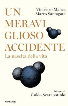 Un meraviglioso accidente