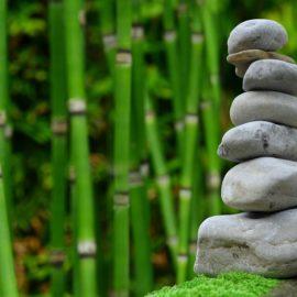 Primavera: i libri per il tuo benessere