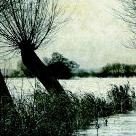 Voce all'autore: tra le nebbie di un giallo padano con Gli invisibili di Valerio Varesi